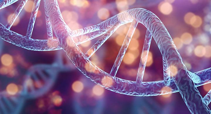 adn genome