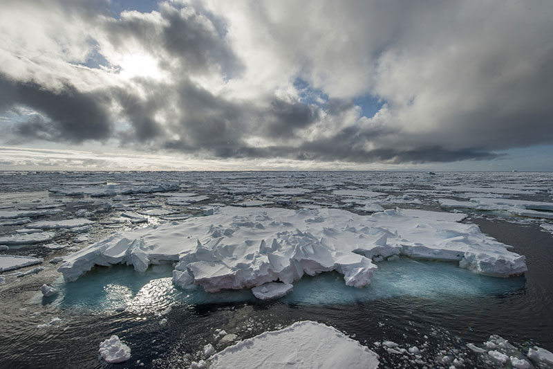 grenoble INP calotte polaire