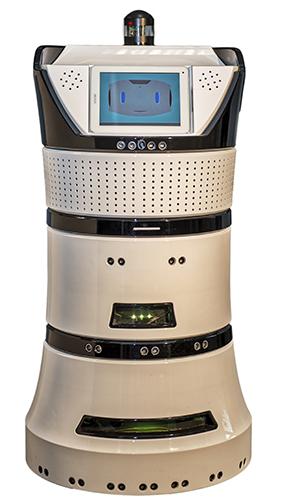 Diya One de Partnering Robotics