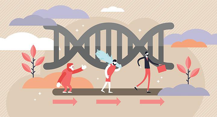 Genome ancien