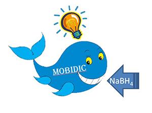 Mobidic.JPG