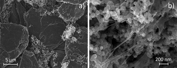 Nanofibres de cellulose